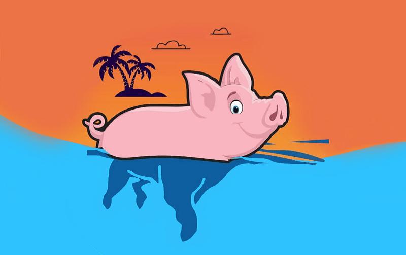 Pig coin là gì